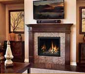Mendota Modern Twigs Panoramic Fireplace
